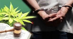 LES DROGUES I LA SEVA DELINQÜÈNCIA | 25H